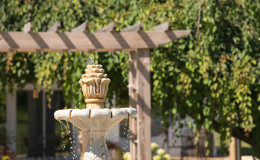 Waters-Edge-Vineyard-Weddings-Exterior-30